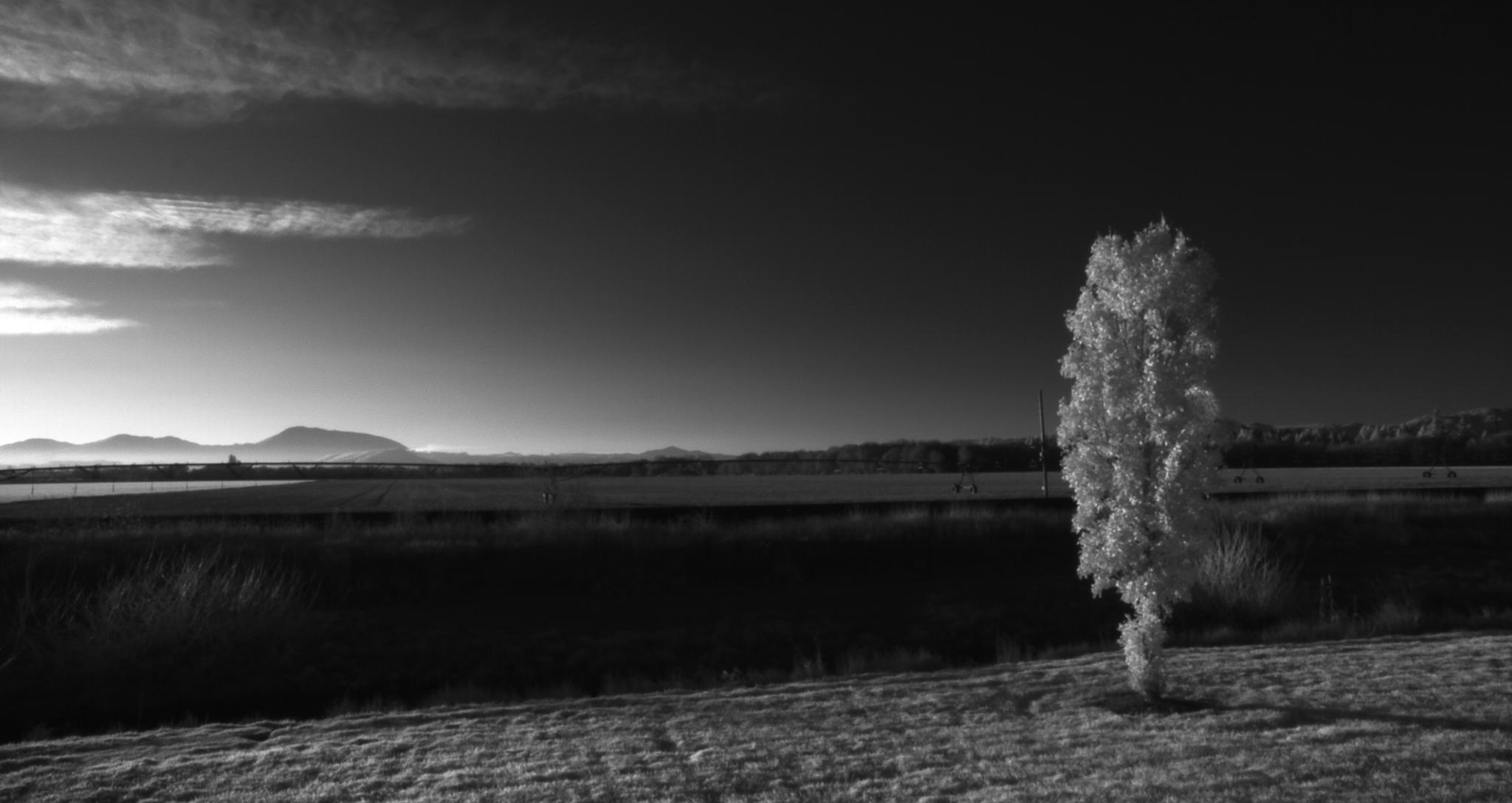 Prix photo de paysage avec PrimeX